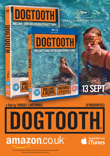 dogtooth_curzon